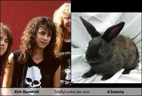Kirk Hammett Totally Looks Like A bunnny
