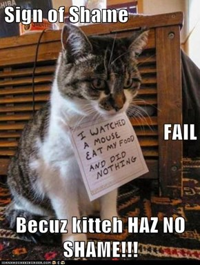 Sign of Shame    FAIL Becuz kitteh HAZ NO SHAME!!!