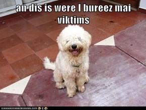 an dis is were I bureez mai viktims