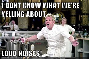 I DONT KNOW WHAT WE'RE YELLING ABOUT  LOUD NOISES!