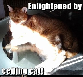 Enlightened by  ceiling cat!