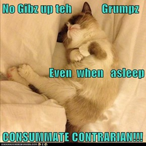 No Gibz up teh             Grumpz          Even  when   asleep                CONSUMMATE CONTRARIAN!!!