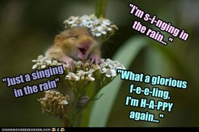 """""""I'm s-i-nging in the rain..."""""""