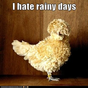 I hate rainy days