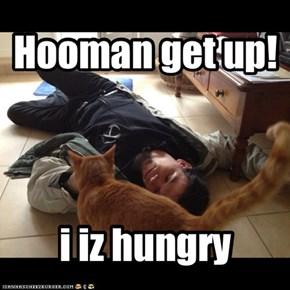 Hooman get up!