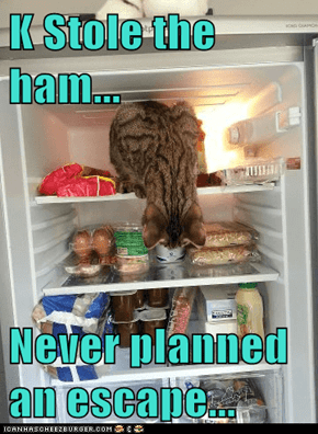K Stole the ham...  Never planned an escape...