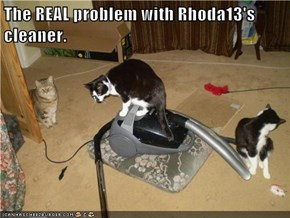 The REAL problem with Rhoda13's cleaner.