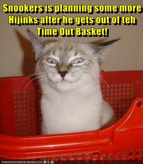 Snookers is planning some more Hijinks after he gets out of teh Time Out Basket!