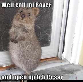 Well call mi Rover   and open up teh Cesar