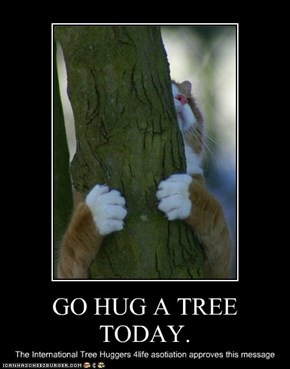GO HUG A TREE TODAY.