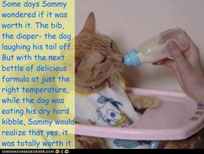 Some days Sammy wondered if it was worth it. The bib,  the diaper- the dog laughing his tail off. But with the next bottle of delicious formula at just the right temperature, while the dog was eating his dry hard kibble, Sammy would realize that yes, it w