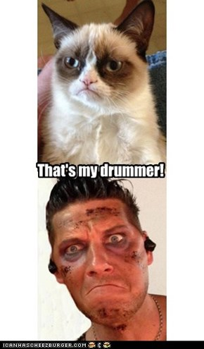 Grumpy Cat finds his human!