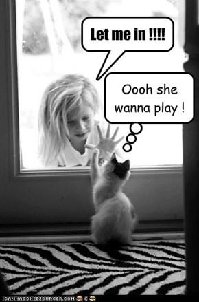 Let me in !!!!