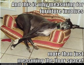 And this is why measuring for furniture involves   more than just                                                             measuring the floor space!