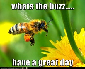 whats the buzz.....  have a great day