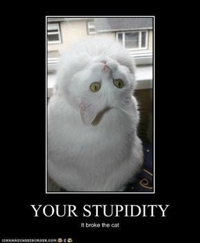 YOUR STUPIDITY