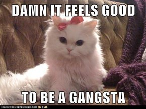 DAMN IT FEELS GOOD  TO BE A GANGSTA