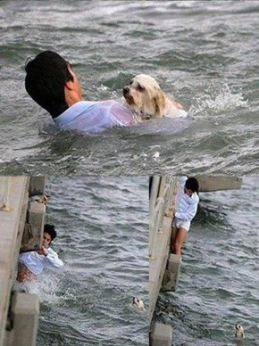 Man's true best friend is himself.