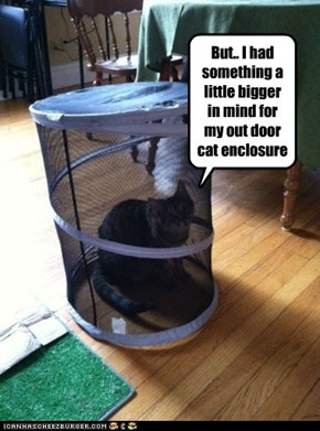 But.. I had something a little bigger in mind for my out door cat enclosure
