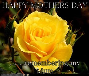 HAPPY MOTHERS DAY  ......remembering my Mum