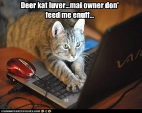 Deer kat luver...mai owner don' feed me enuff...