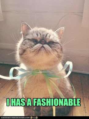 I HAS A FASHIONABLE