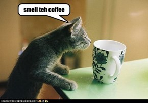 smell teh coffee