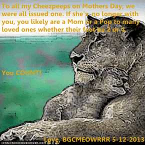 To all my Cheezpeeps on Mothers Day; we were all issued one. If she's  no longer with you, you likely are a Mom or a Pop to many loved ones whether their feet be 2 or 4. You COUNT! Love, BGCMEOWRRR 5-12-2013