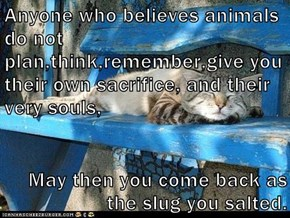 Anyone who believes animals do not plan,think,remember,give you their own sacrifice, and their very souls,   May then you come back as the slug you salted.