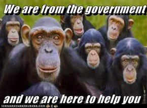 We are from the government   and we are here to help you