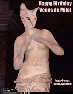 Happy Birthday  Venus de Milo!