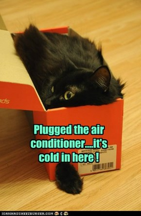 Plugged the air conditioner....it's cold in here !