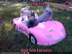 Teh Fast  And Teh Furriest