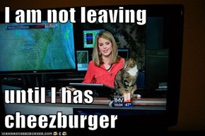 I am not leaving  until I has cheezburger