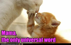Mama,   the only universal word