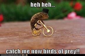 heh heh...  catch me now birds of prey!!