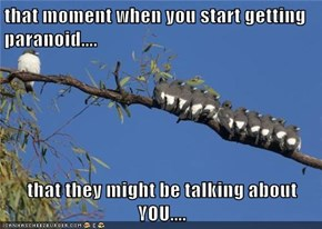 that moment when you start getting paranoid....  that they might be talking about YOU....