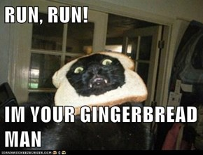 RUN, RUN!  IM YOUR GINGERBREAD MAN
