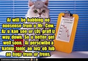 Ai  will  be  habbing  no nonsense  frum  u  Mr.  Cow.  Az  u  kan  see  ur  LOL  graff iz way  down.  So  u  better  get well soon.   Ai  perscwibe a katnip  tonic  an  lotz  ob  lub an  hugz  frum  ur  frens.