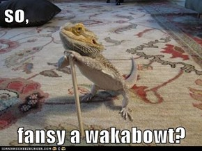 so,  fansy a wakabowt?