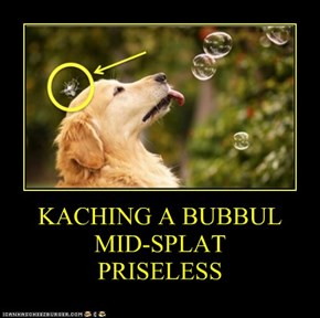 KACHING A BUBBUL MID-SPLAT PRISELESS