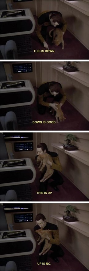 Data Trains His Cat