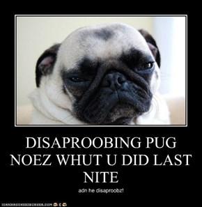 DISAPROOBING PUG NOEZ WHUT U DID LAST NITE