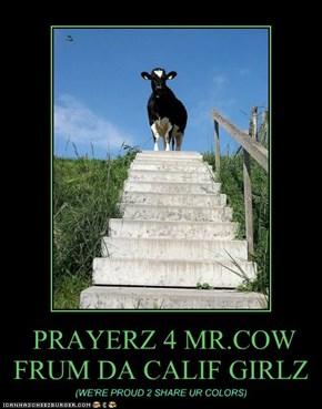 PRAYERZ 4 MR.COW FRUM DA CALIF GIRLZ