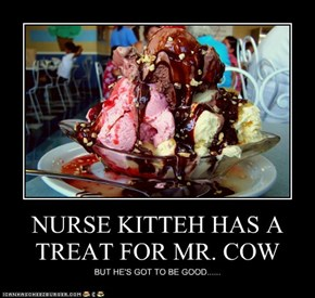 NURSE KITTEH HAS A TREAT FOR MR. COW