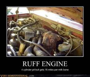 RUFF ENGINE