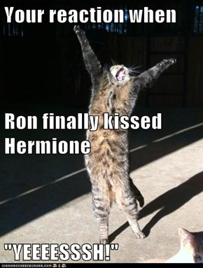 "Your reaction when  Ron finally kissed Hermione ""YEEEESSSH!"""