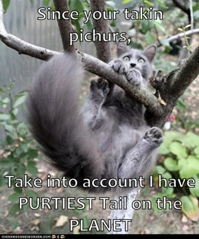 Since your takin pichurs,  Take into account I have PURTIEST Tail on the PLANET