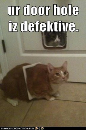 ur door hole iz defektive.