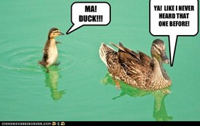 A WISE QUACKER!